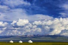 高山的传统牧场地 免版税库存照片