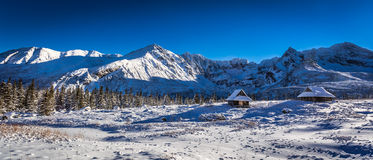 高山的山全景在冬天 库存图片