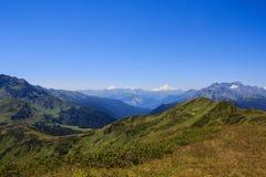 高山草甸绿草和落矶山脉风景  免版税库存照片