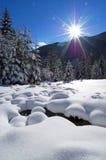高山谷冬天 图库摄影