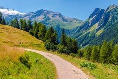 高山足迹在瑞士 库存图片