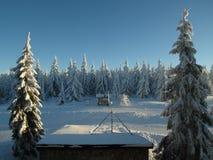 高山风景在新近地降雪的雪下的冬天 库存照片