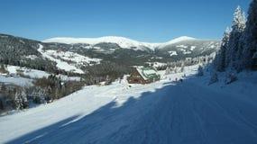 高山风景在新近地降雪的雪下的冬天 免版税库存照片
