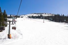 高山滑雪坡道 免版税库存照片