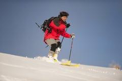 高山滑雪者 库存照片