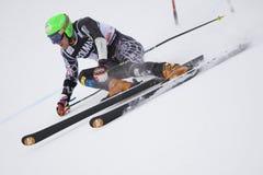 高山Alta Badia杯子大滑雪障碍滑雪世界 免版税库存照片