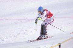 高山marlies schild滑雪者赢利地区 免版税库存照片