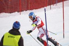 高山marlies schild滑雪 免版税库存图片