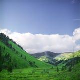 高山s夏天视图 免版税库存图片