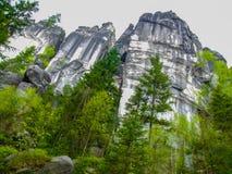 高岩石的森林在AdrÅ ¡帕赫特普利采在CZechia晃动 免版税库存图片