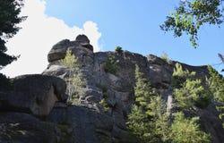 高峭壁的美丽的景色在森林里 库存图片