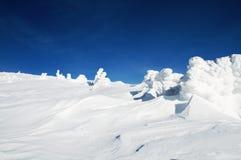 高峰Snezka 1602 m n.m。 免版税库存照片