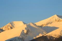 高峰Vihren (2914 m)在日出 库存图片