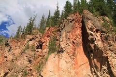 高度与绿色树的红色岩石 免版税库存照片