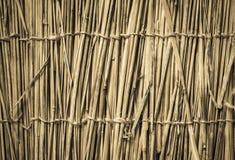 高度详细的竹背景 完善的自然纹理 库存照片