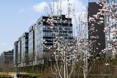 高技术北京庭院 库存图片