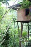 高杆的木房子 库存图片