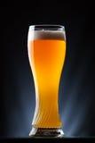 高杯在黑暗的背景的啤酒 免版税图库摄影