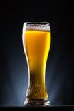 高杯在黑暗的背景的啤酒 免版税库存照片