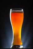 高杯在黑暗的背景的啤酒 免版税库存图片