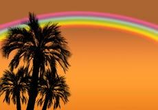 高棕榈树剪影与彩虹和金黄天空的作为背景 库存照片