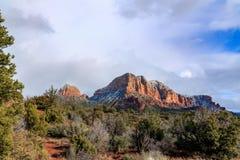 高沙漠森林和红砂岩形成在Sedona,亚利桑那 免版税库存图片