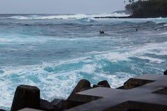 高海浪的冲浪者 库存照片