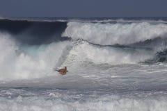 高海浪警告 库存图片