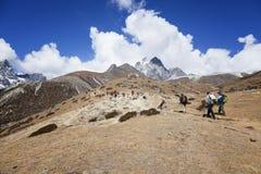 高涨在喜马拉雅山山 有远足在山的背包的旅客 登山体育生活方式概念 图库摄影