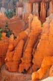高涨犹他的bryce峡谷 图库摄影