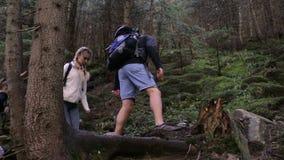 高涨男性混合模型人员的aguamansa亚洲背景白种人女性森林愉快的远足者赛跑微笑的西班牙tenerife妇女 在山的远足者三重奏 走通过有背包的森林道路的两妇女和人老牛 股票录像