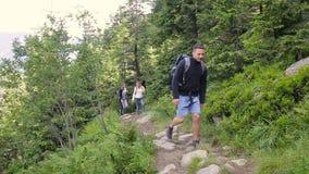 高涨男性混合模型人员的aguamansa亚洲背景白种人女性森林愉快的远足者赛跑微笑的西班牙tenerife妇女 在山的远足者三重奏 走通过有背包的森林道路的两妇女和人老牛 影视素材