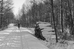 高涨魔术其它短小冬天木头 免版税图库摄影