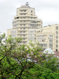 高白色大厦和树 图库摄影