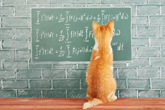 更高的数学 库存照片