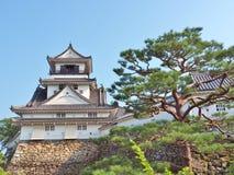 高知城堡在高知专区,日本 免版税图库摄影