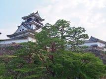 高知城堡在高知,高知专区,日本 免版税库存照片