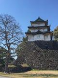 高知,日本- 2015年3月26日:高知城堡全视图  免版税库存照片