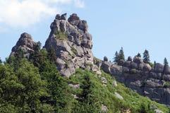 高石岩石在森林里 免版税库存图片