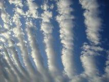 高积云带 库存图片