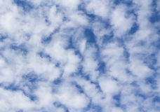 高积云美好的背景在蓝天的 库存图片
