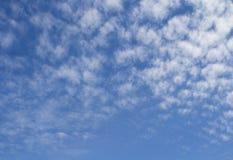 高积云美好的背景在蓝天的 库存照片
