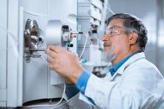 高级男性研究员执行的科学研究对实验室 免版税库存照片