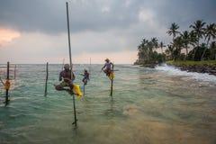 高跷渔夫斯里南卡传统捕鱼 库存照片
