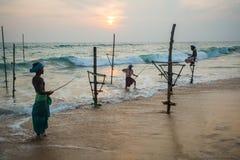 高跷渔夫斯里南卡传统捕鱼 图库摄影