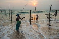 高跷渔夫斯里南卡传统捕鱼 库存图片