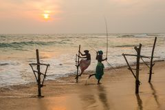 高跷渔夫斯里南卡传统捕鱼 免版税库存图片