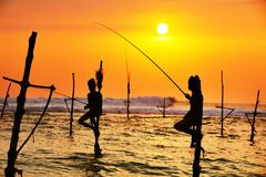 高跷渔 库存图片