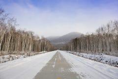 高速公路冬天 库存照片