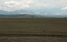 高速公路和蒙古干草原在东Sayan的山背景  库存照片